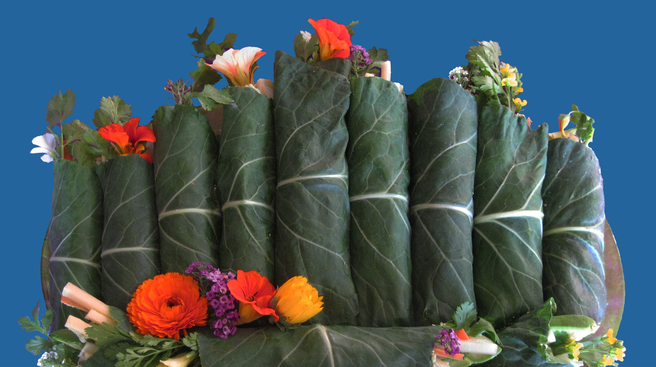 Gorgeous Raw Vegan Gluten-Free Tangy Dill Collard Wraps with Edible Flowers